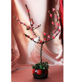 """Дерево счастья """"САКУРА"""""""